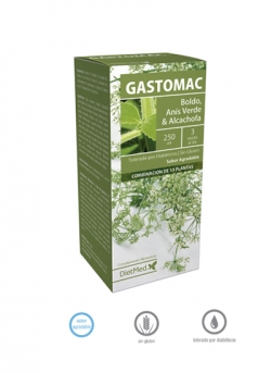 Gastomac solución oral 250 ml Dietmed