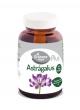 Astrágalus 60 comprimidos El Granero Integral