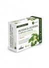 Moringa Complex 60 cápsulas 400 mg Nature Essential