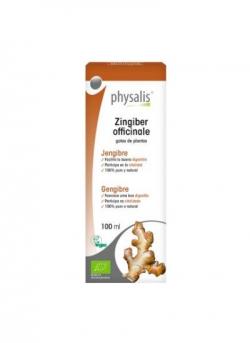 Zingiber Officinale 100 ml Physalis
